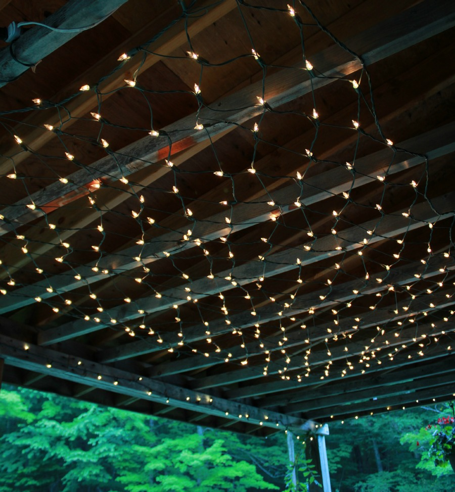 trellis lighting. img_4374rs trellis lighting